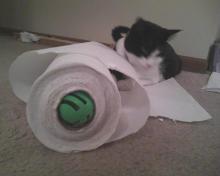 balle et rouleau des serviettes en papier
