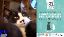 Journée mondial contre l'abandon des animaux de compagnie -- affiche